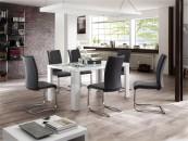 Jidelní židle CORA II._obr. 1