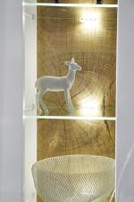 """Obývací nábytek JUNO_detail osvětlení a """"Hirnholz"""" imitace na zadní ploše vitriny_obr. 12"""