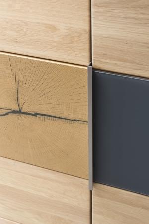 """Ložnicová sestava GENOVA _detail šatní skříně typ 06_dveře s vložkou """"Hirnholz""""_obr. 10"""