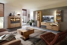 Obývací a jídelní nábytek LAUSANNE_sestava 45 65 HH 91 + highboard 22 + konferenční stůl 20 65 HH 02_denní pohled_obr. 3